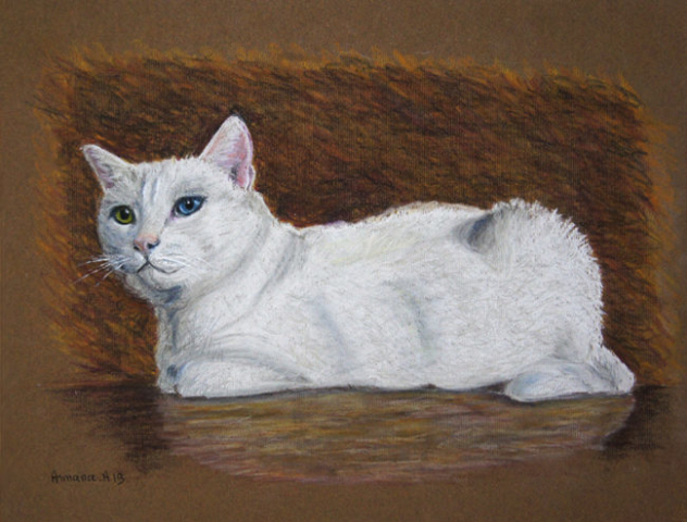 Armana Alexandra pastel